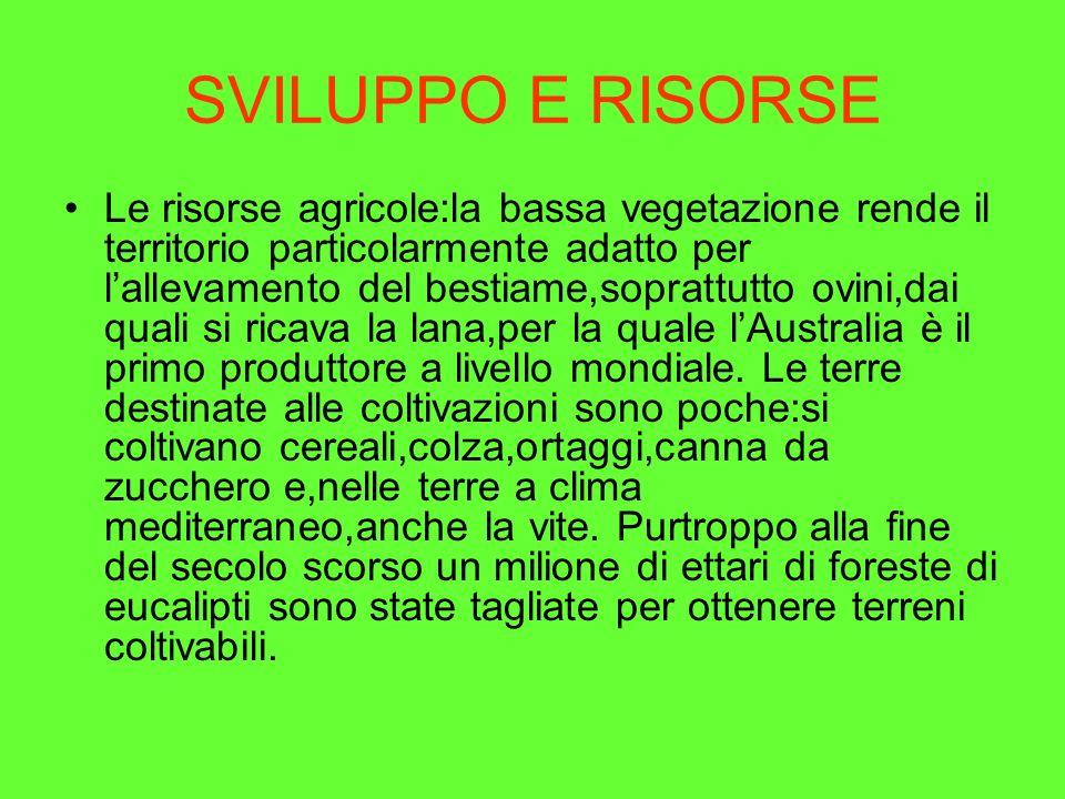 SVILUPPO E RISORSE
