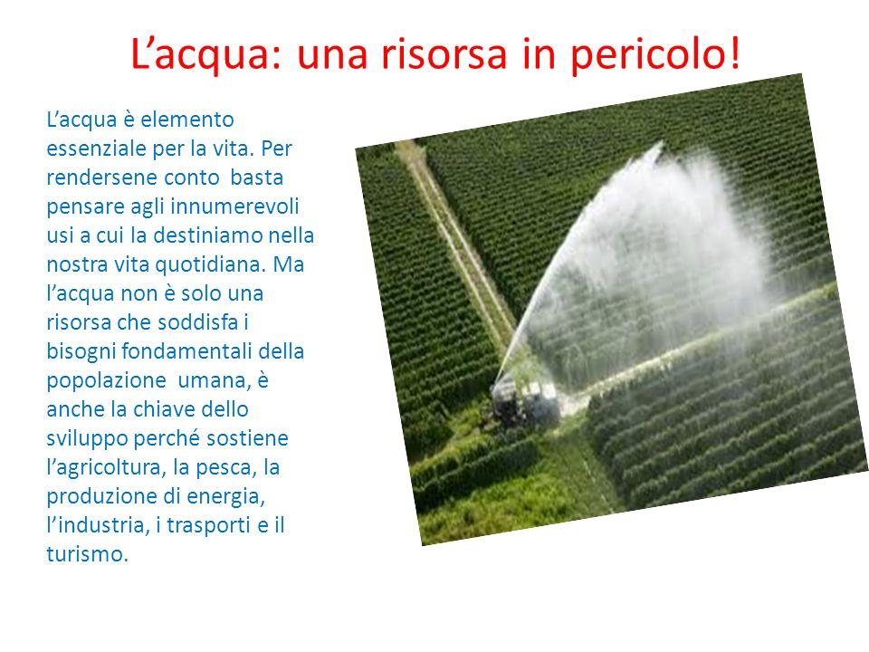 L'acqua: una risorsa in pericolo!