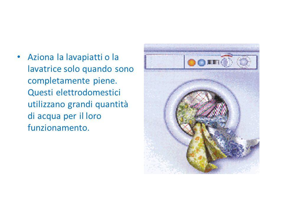 Aziona la lavapiatti o la lavatrice solo quando sono completamente piene.