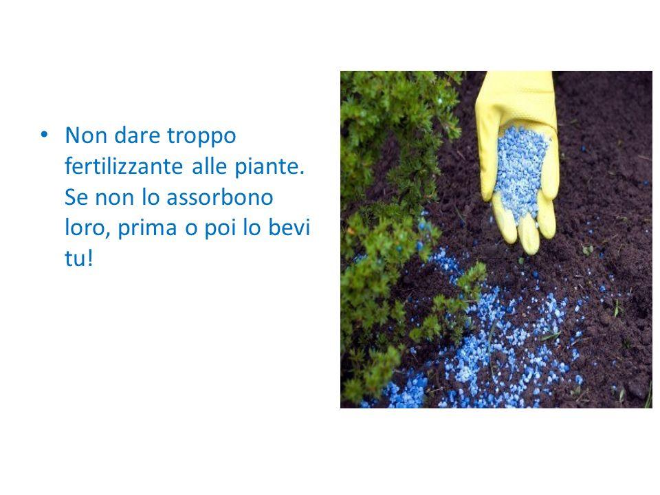 Non dare troppo fertilizzante alle piante