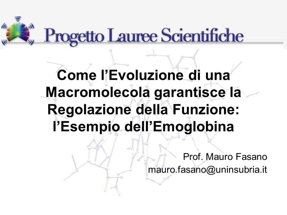 Prof. Mauro Fasano mauro.fasano@uninsubria.it