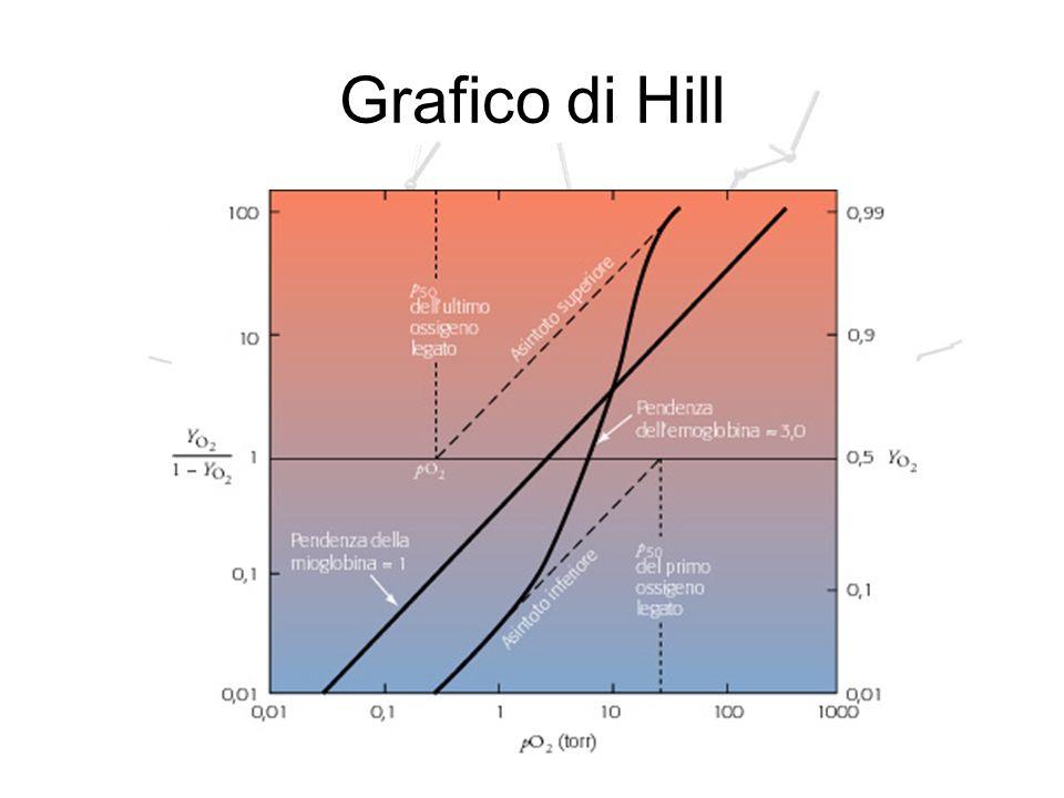 Grafico di Hill