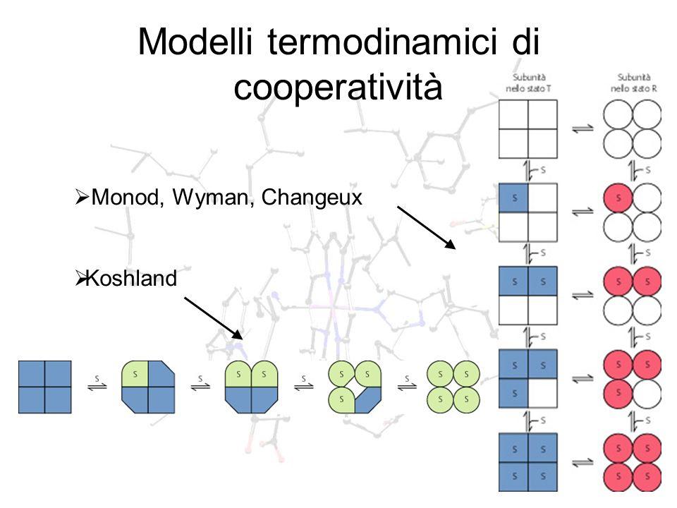 Modelli termodinamici di cooperatività