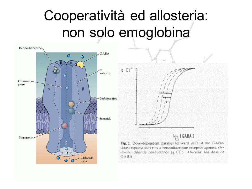 Cooperatività ed allosteria: non solo emoglobina