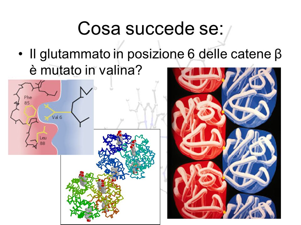 Cosa succede se: Il glutammato in posizione 6 delle catene β è mutato in valina