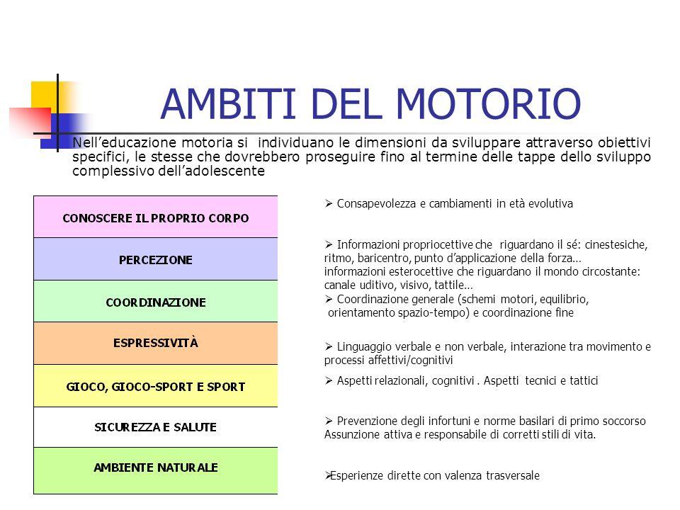 AMBITI DEL MOTORIO