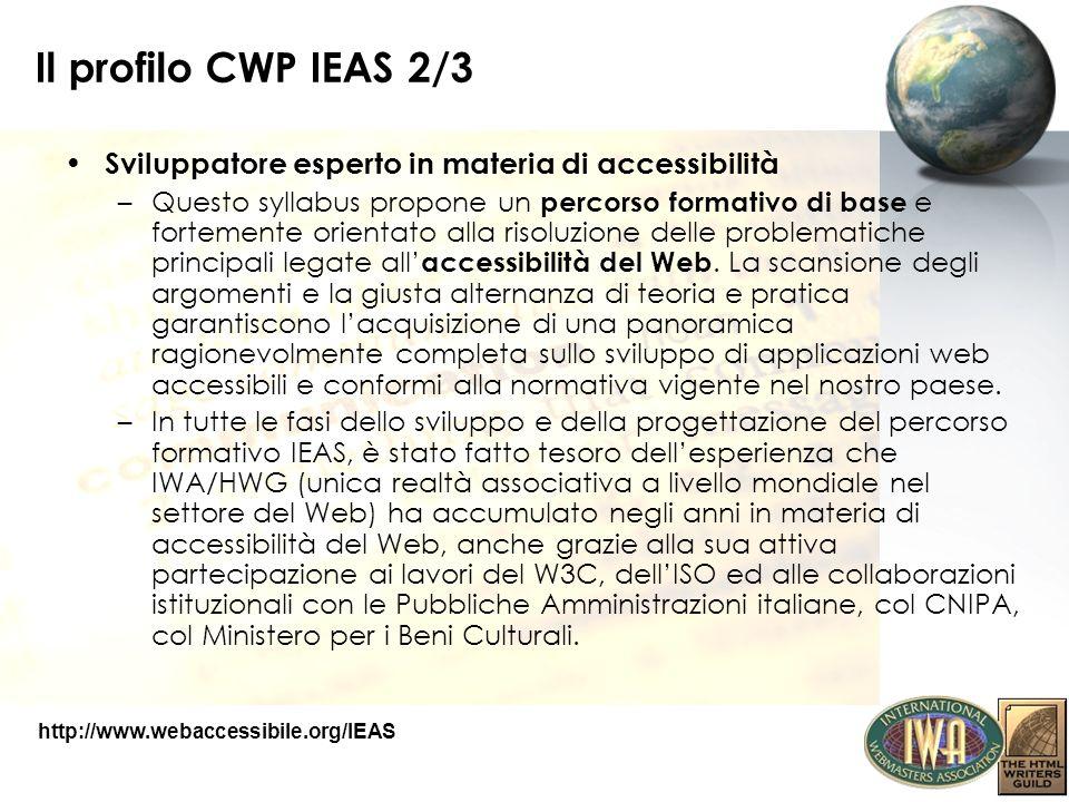 Il profilo CWP IEAS 2/3 Sviluppatore esperto in materia di accessibilità.