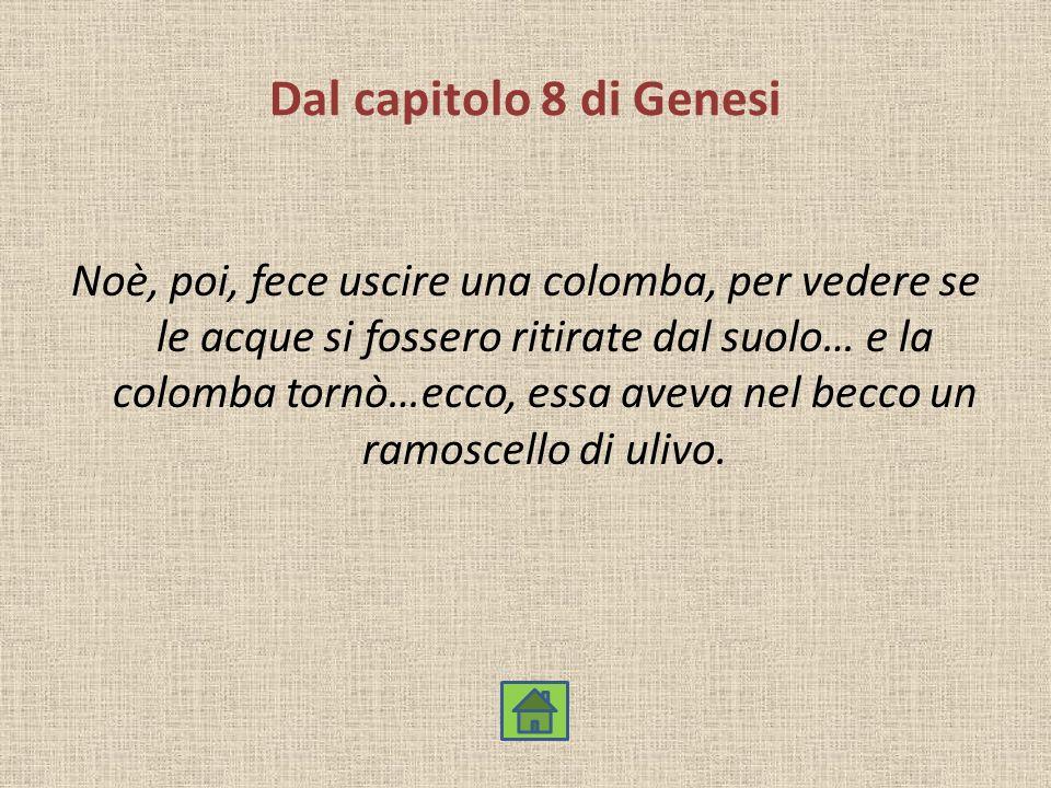 Dal capitolo 8 di Genesi