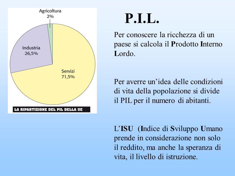 P.I.L. Per conoscere la ricchezza di un paese si calcola il Prodotto Interno Lordo.