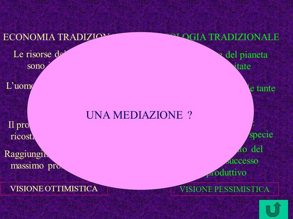 UNA MEDIAZIONE ECONOMIA TRADIZIONALE ECOLOGIA TRADIZIONALE