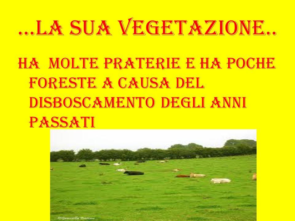 …La sua vegetazione..Ha molte praterie e ha poche foreste a causa del disboscamento degli anni passati.