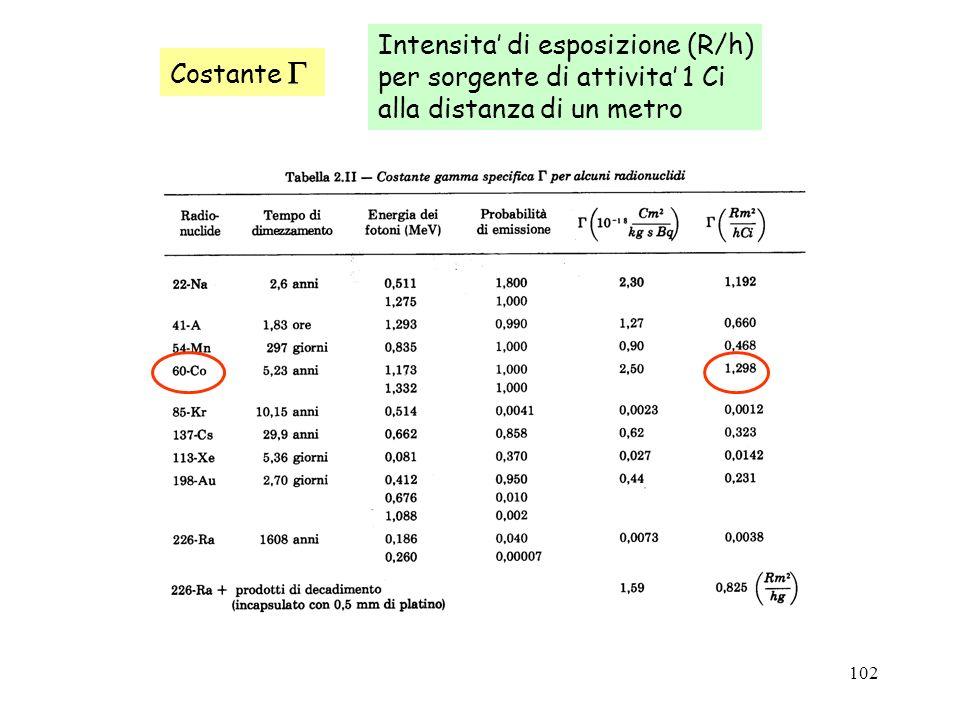 Intensita' di esposizione (R/h)
