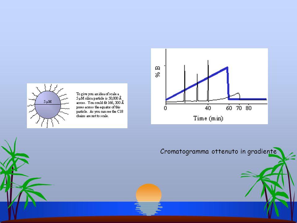 Cromatogramma ottenuto in gradiente