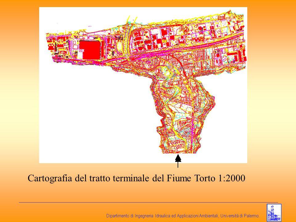 Cartografia del tratto terminale del Fiume Torto 1:2000
