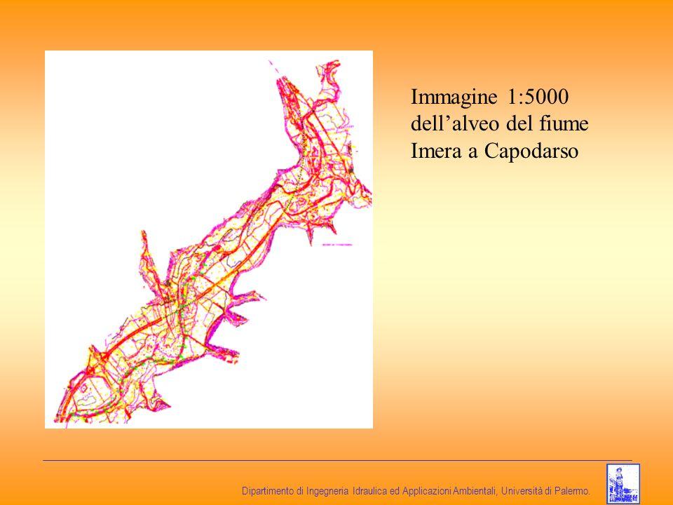 Immagine 1:5000 dell'alveo del fiume Imera a Capodarso