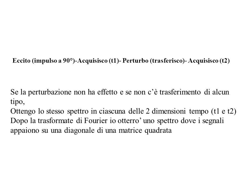 Eccito (impulso a 90°)-Acquisisco (t1)- Perturbo (trasferisco)- Acquisisco (t2)