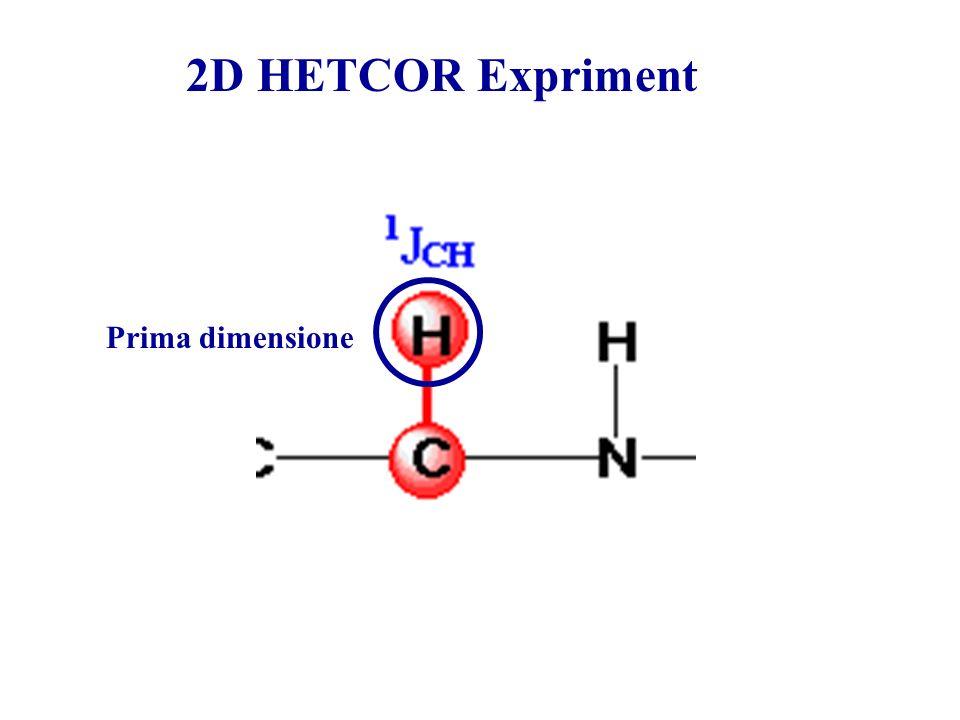 2D HETCOR Expriment Prima dimensione