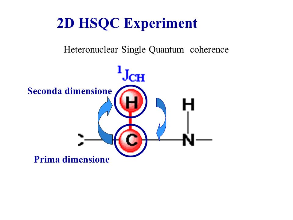 2D HSQC Experiment Heteronuclear Single Quantum coherence