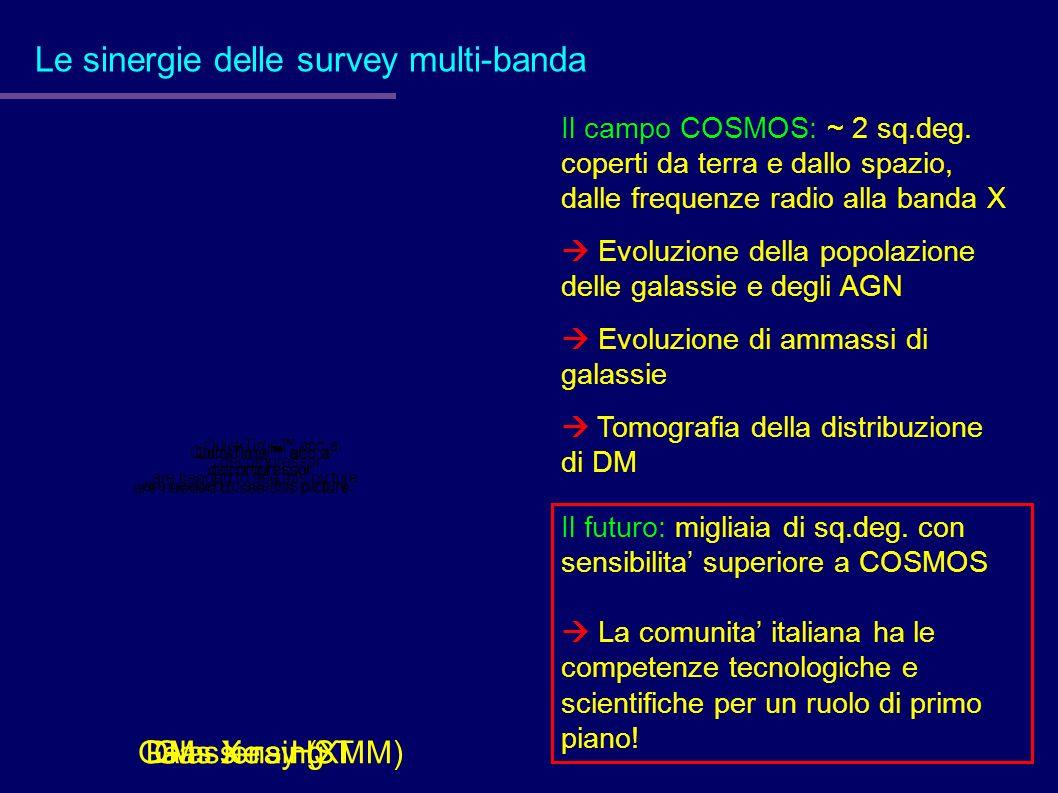 Le sinergie delle survey multi-banda