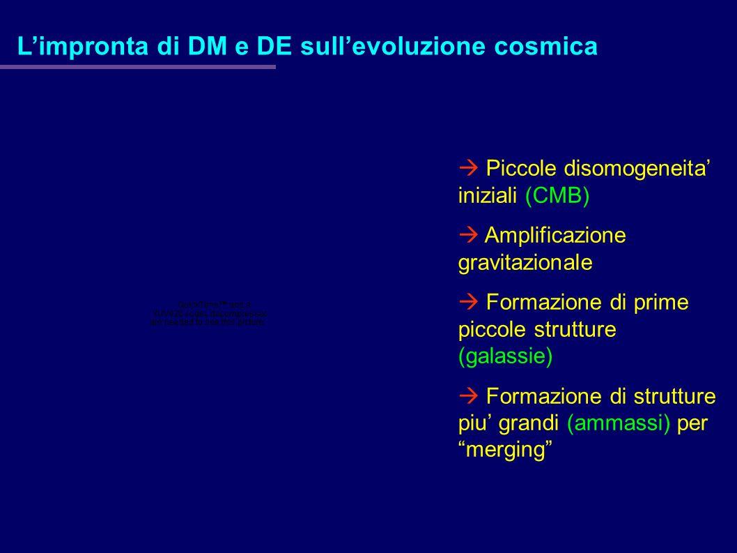 L'impronta di DM e DE sull'evoluzione cosmica