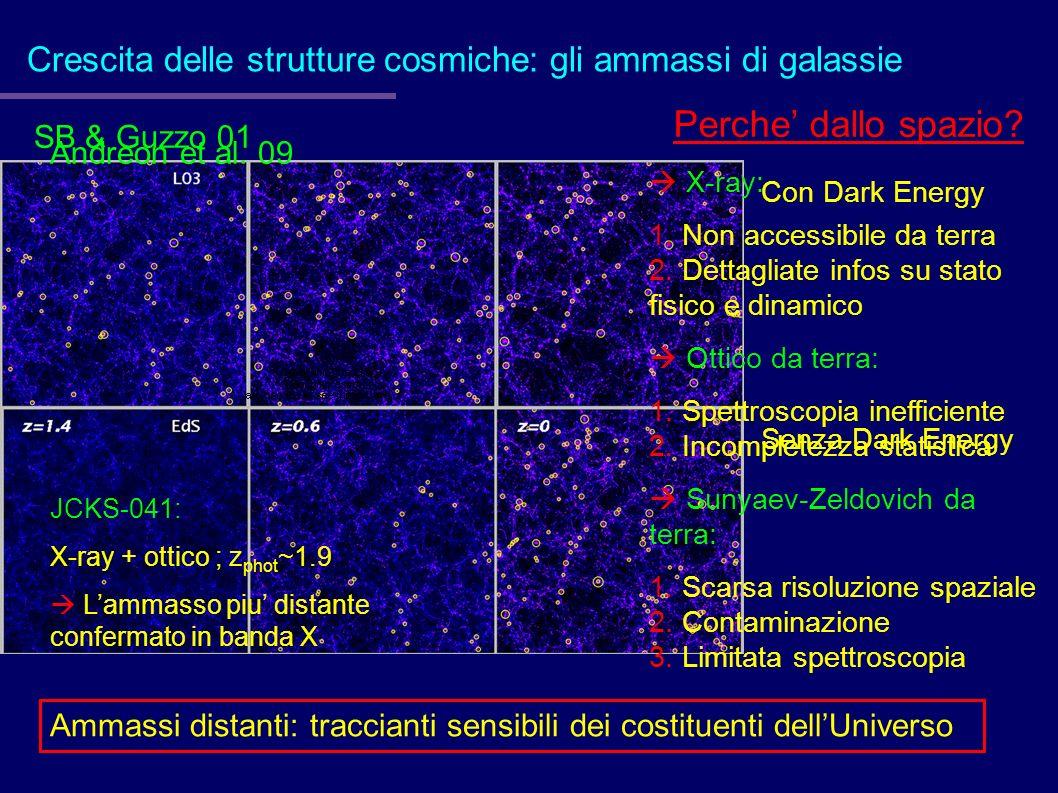 Crescita delle strutture cosmiche: gli ammassi di galassie