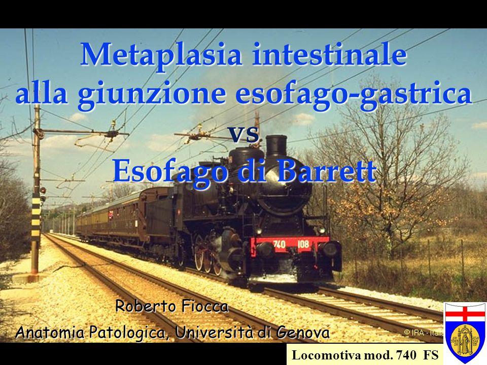 Anatomia Patologica, Università di Genova