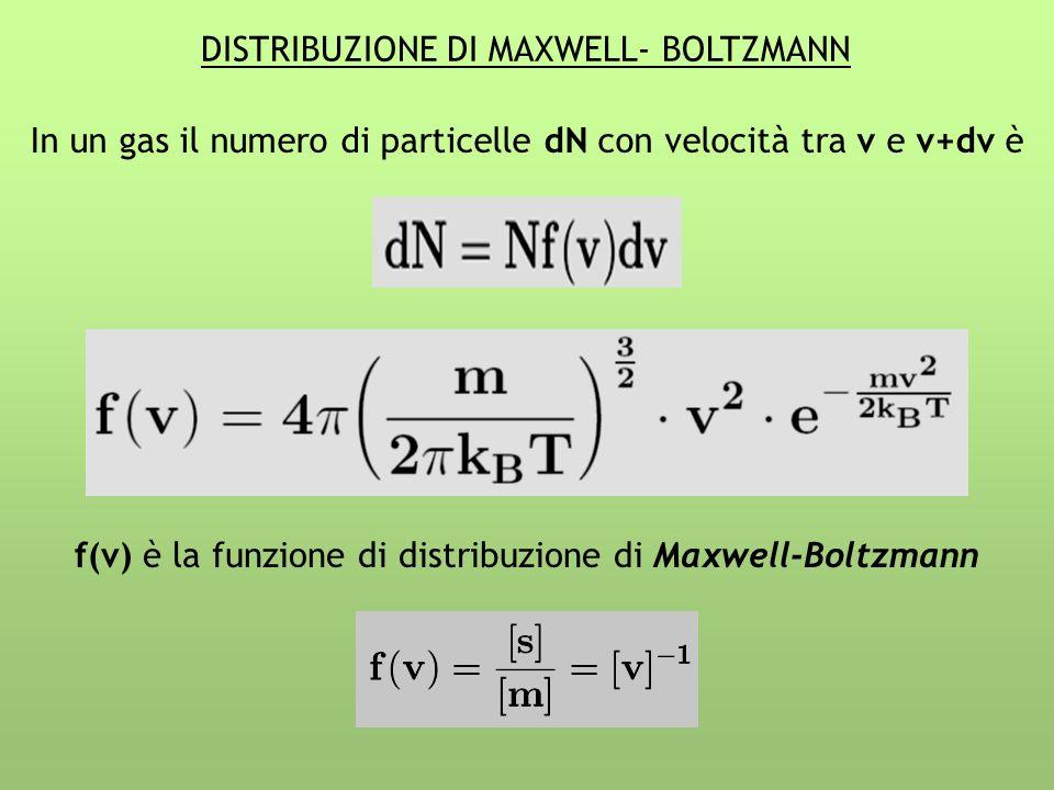DISTRIBUZIONE DI MAXWELL- BOLTZMANN
