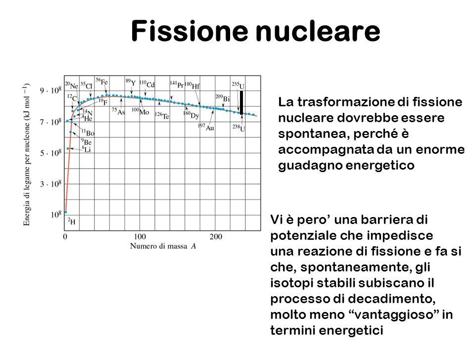 Fissione nucleare La trasformazione di fissione nucleare dovrebbe essere spontanea, perché è accompagnata da un enorme guadagno energetico.