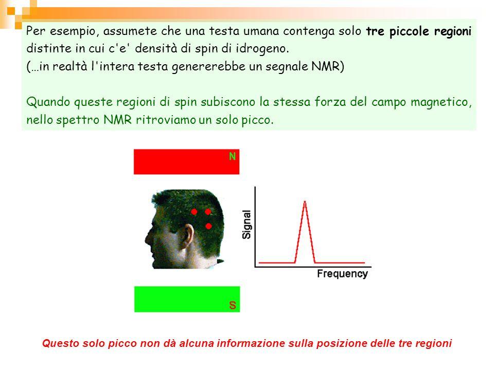 (…in realtà l intera testa genererebbe un segnale NMR)
