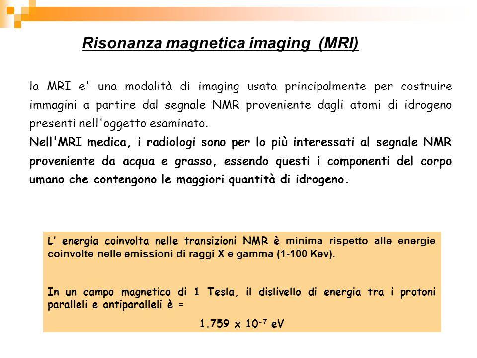 Risonanza magnetica imaging (MRI)
