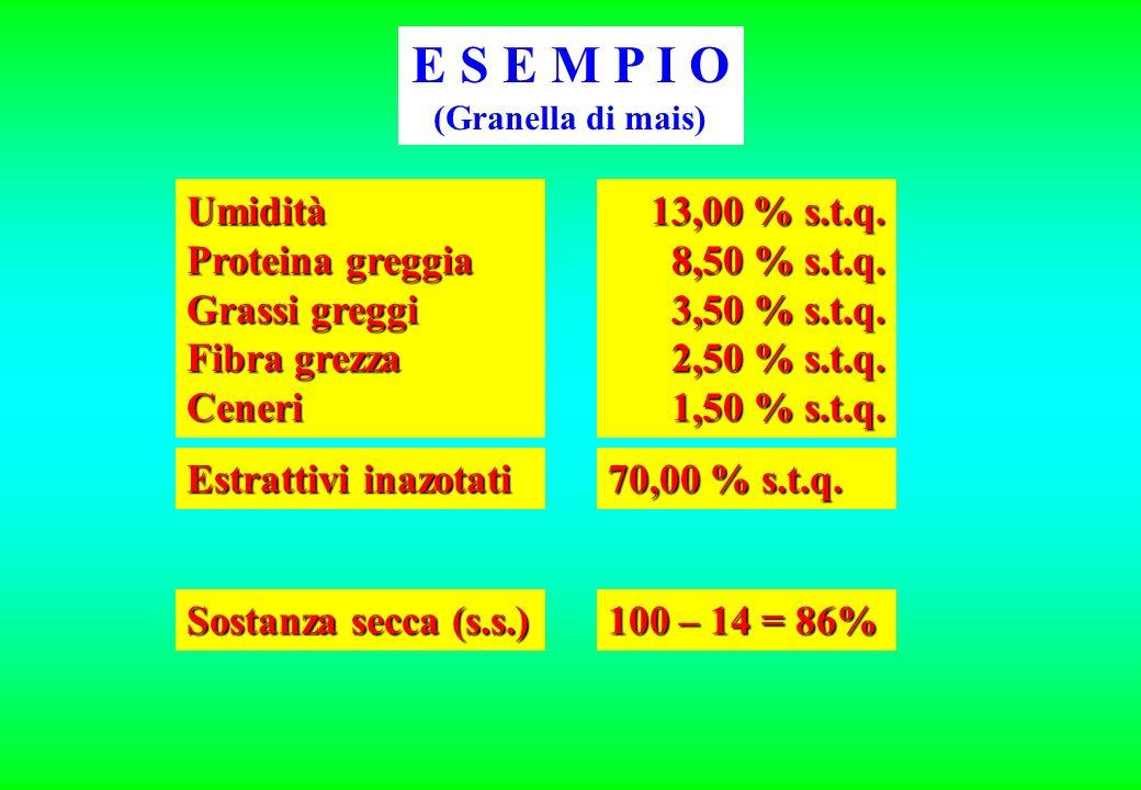 E S E M P I O Umidità Proteina greggia Grassi greggi Fibra grezza