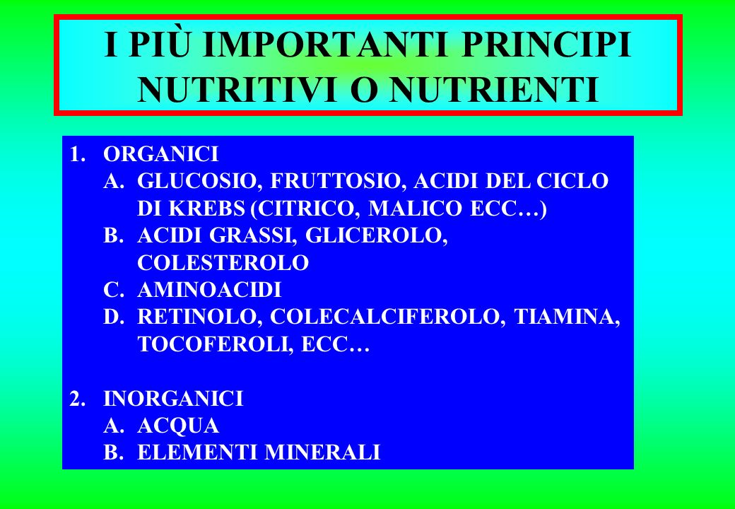 I PIÙ IMPORTANTI PRINCIPI NUTRITIVI O NUTRIENTI