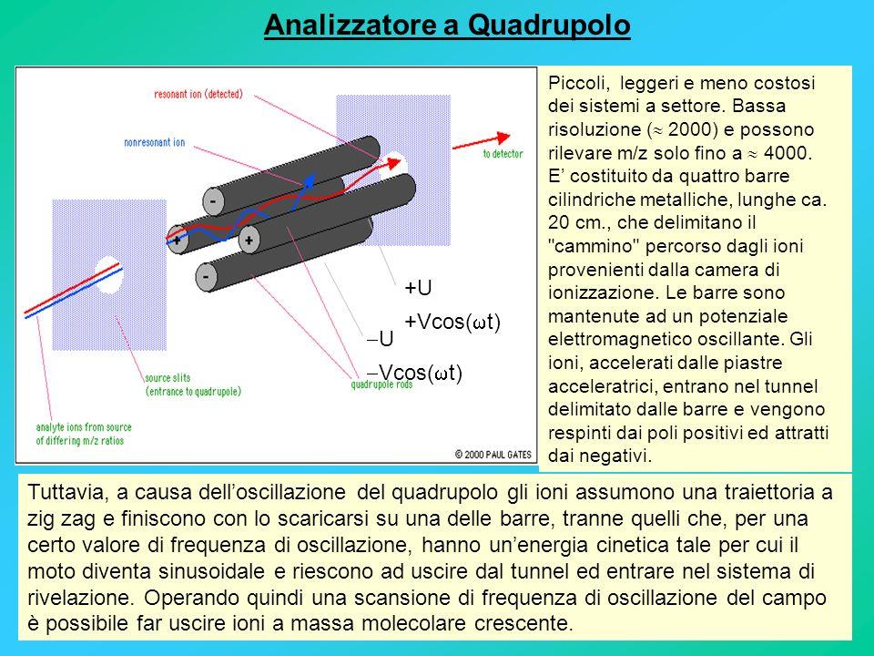 Analizzatore a Quadrupolo