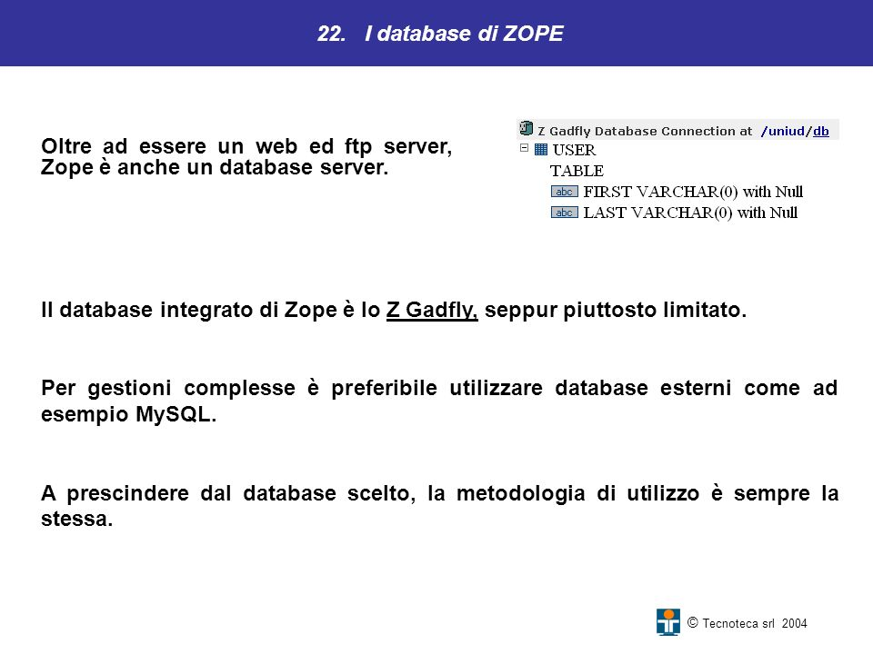 Oltre ad essere un web ed ftp server, Zope è anche un database server.
