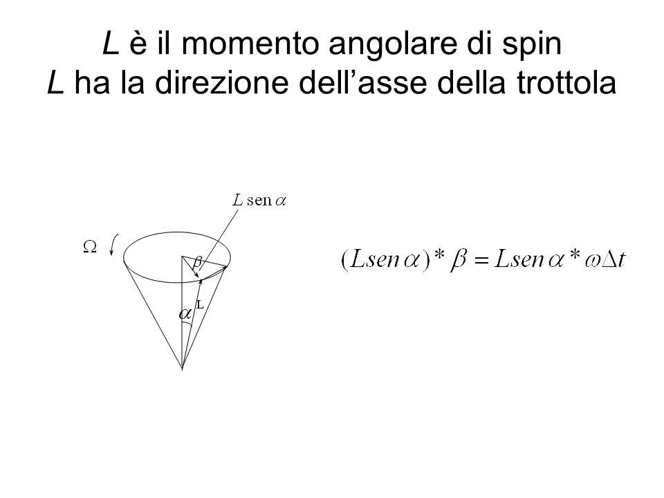 L è il momento angolare di spin L ha la direzione dell'asse della trottola