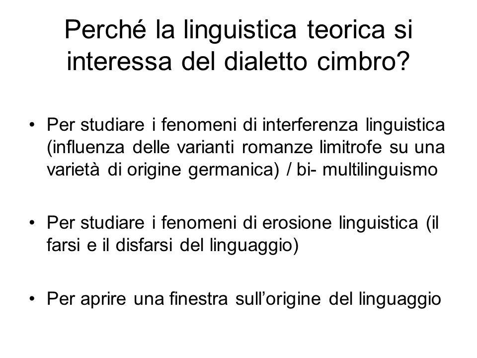 Perché la linguistica teorica si interessa del dialetto cimbro