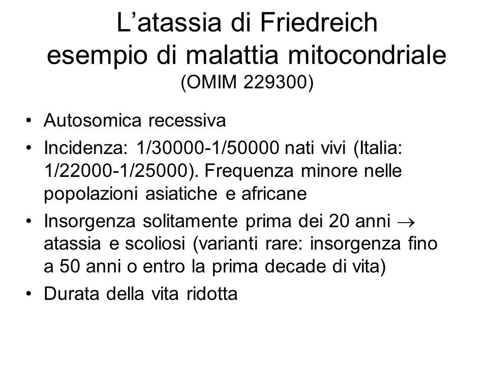 L'atassia di Friedreich esempio di malattia mitocondriale (OMIM 229300)