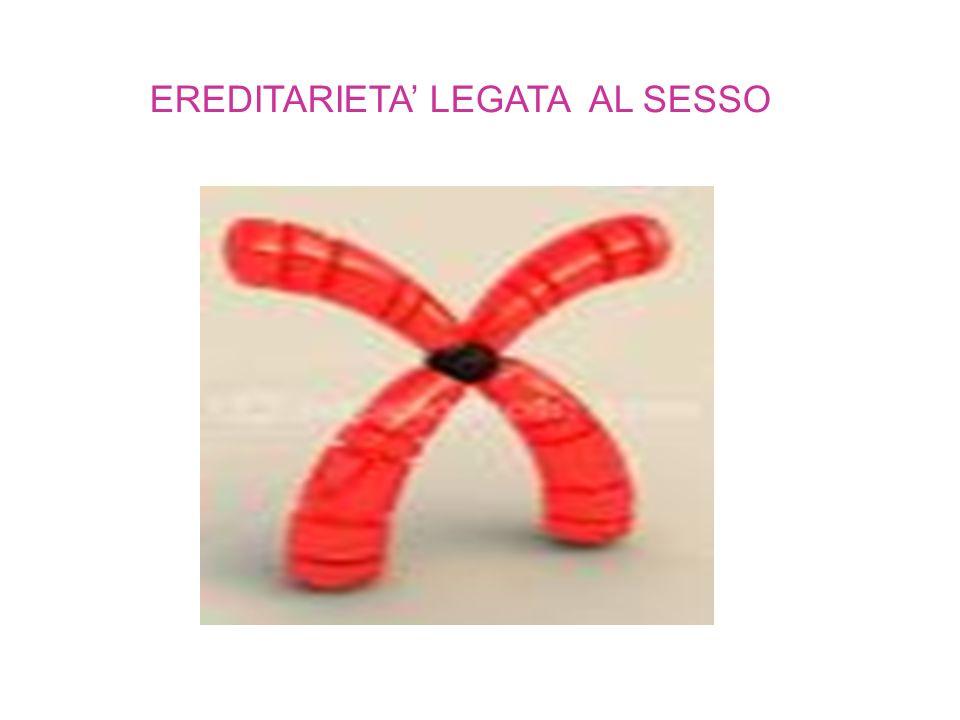 EREDITARIETA' LEGATA AL SESSO