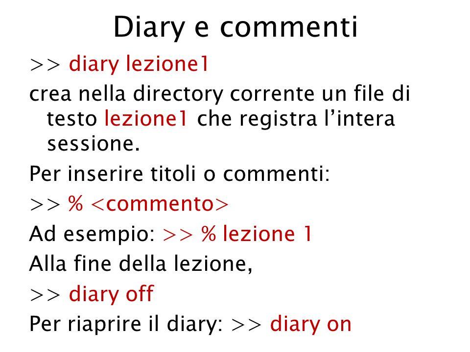 Diary e commenti