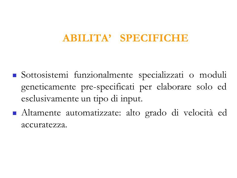 ABILITA' SPECIFICHE