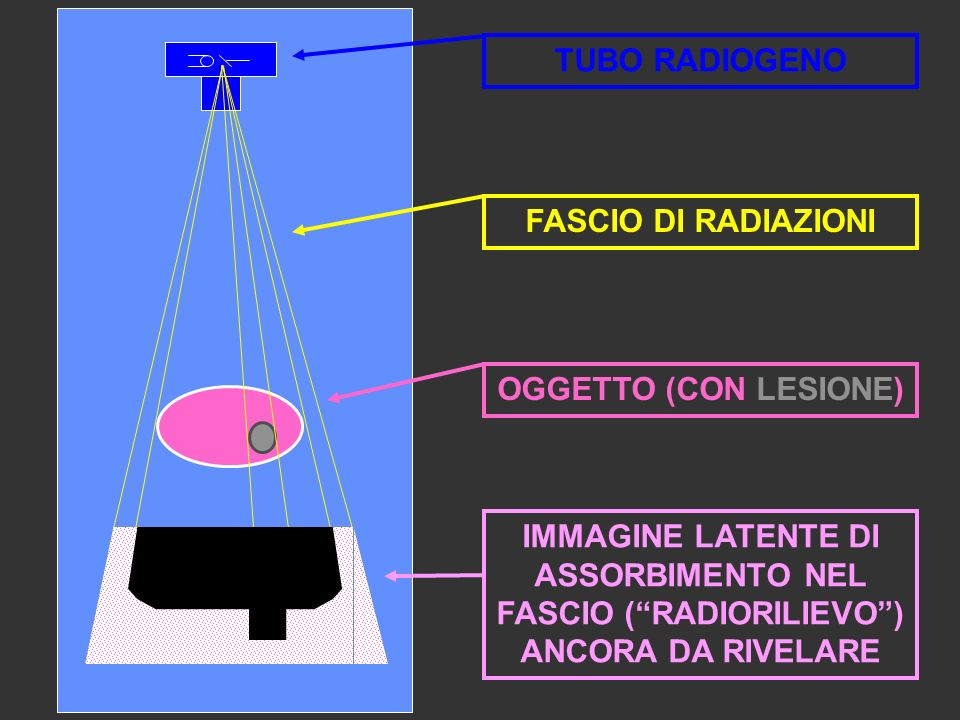 IMMAGINE LATENTE DI ASSORBIMENTO NEL FASCIO ( RADIORILIEVO )