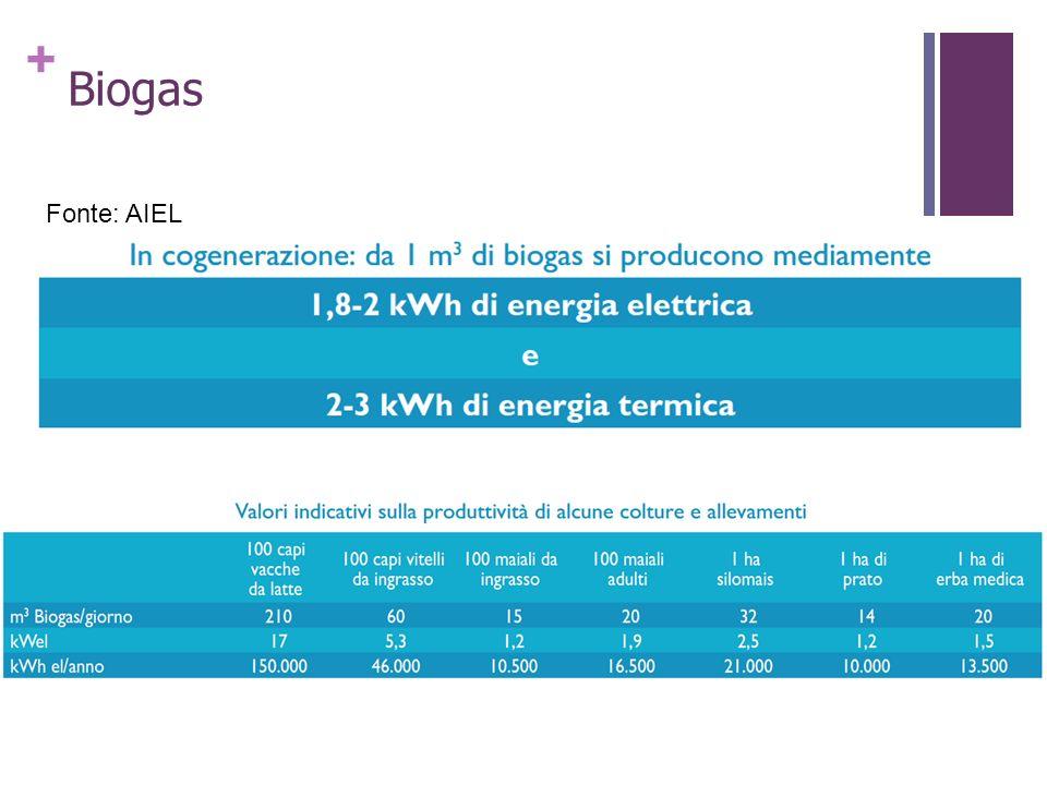 Biogas Fonte: AIEL