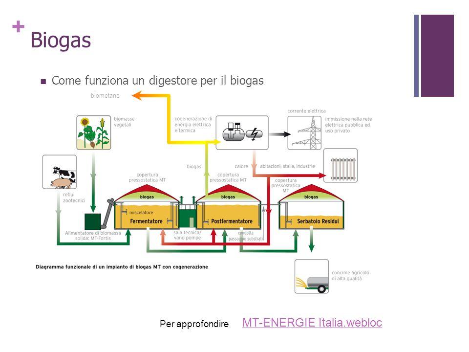 Biogas Come funziona un digestore per il biogas