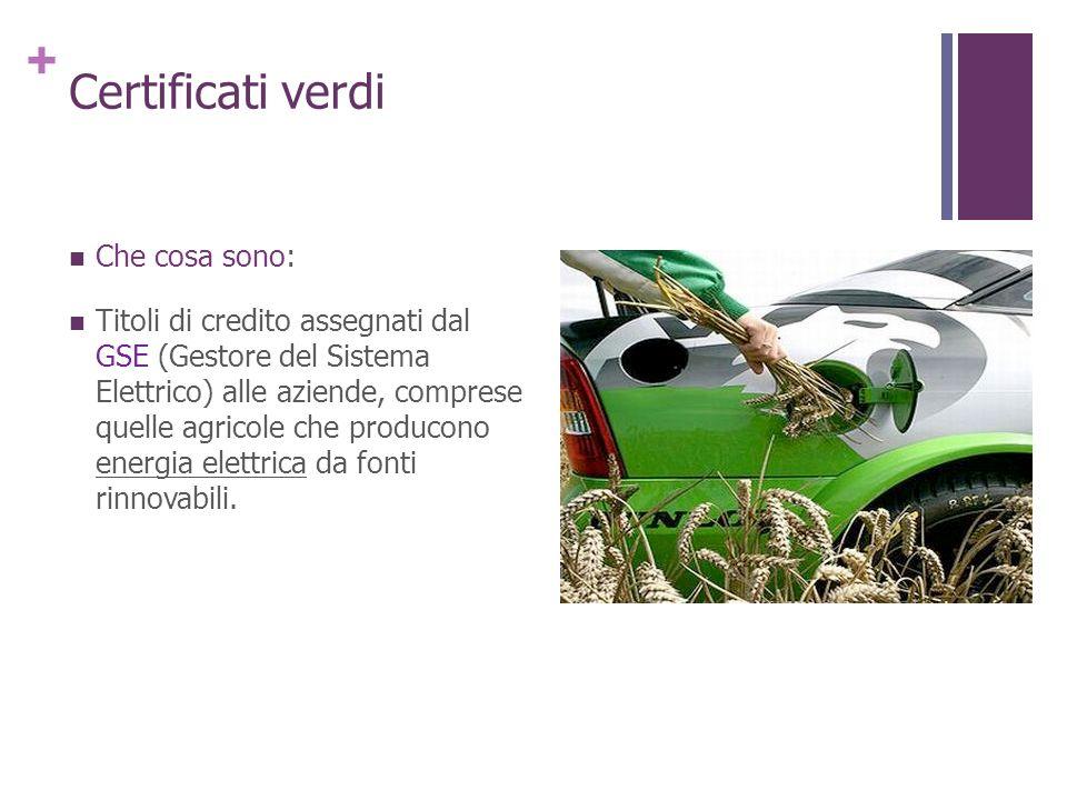 Certificati verdi Che cosa sono: