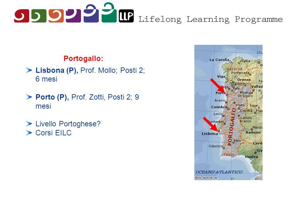 Lisbona (P), Prof. Mollo; Posti 2; 6 mesi