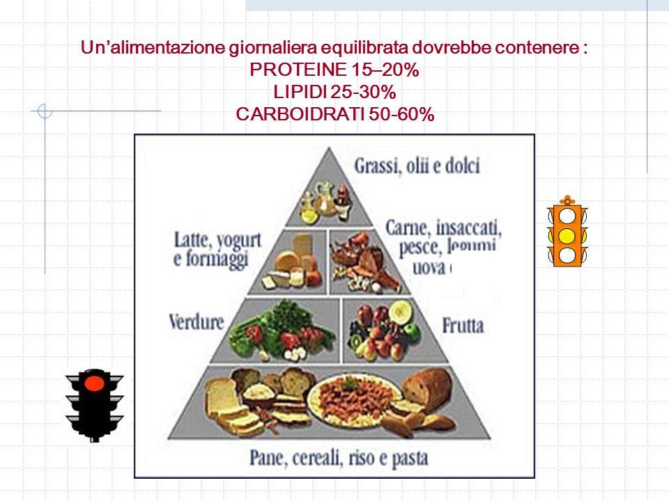 Un'alimentazione giornaliera equilibrata dovrebbe contenere : PROTEINE 15–20% LIPIDI 25-30% CARBOIDRATI 50-60%