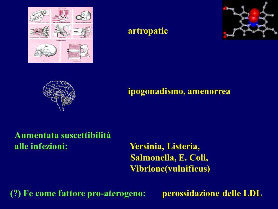 ( ) Fe come fattore pro-aterogeno: perossidazione delle LDL