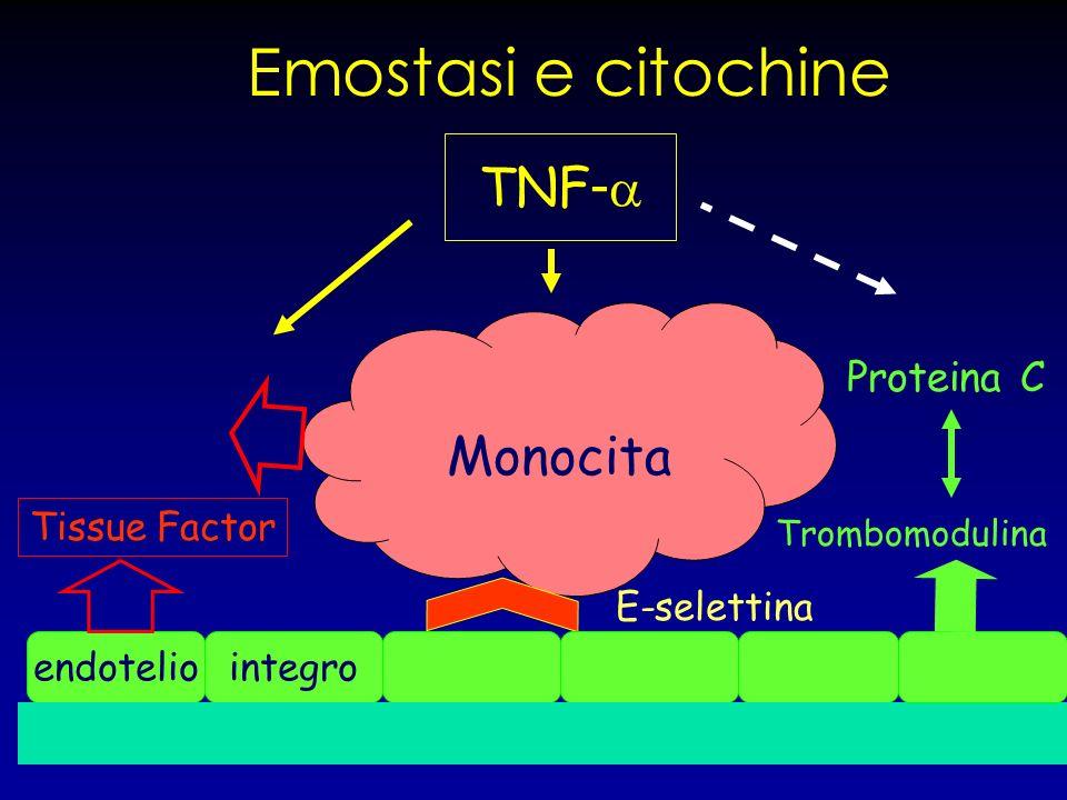 Emostasi e citochine TNF-a Monocita Proteina C Tissue Factor