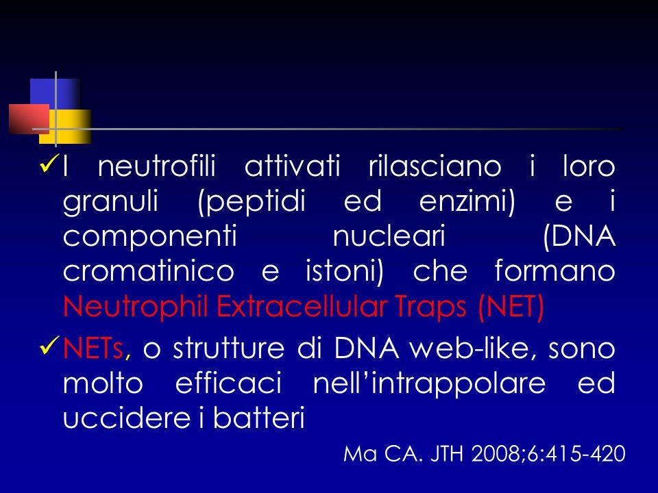 I neutrofili attivati rilasciano i loro granuli (peptidi ed enzimi) e i componenti nucleari (DNA cromatinico e istoni) che formano Neutrophil Extracellular Traps (NET)