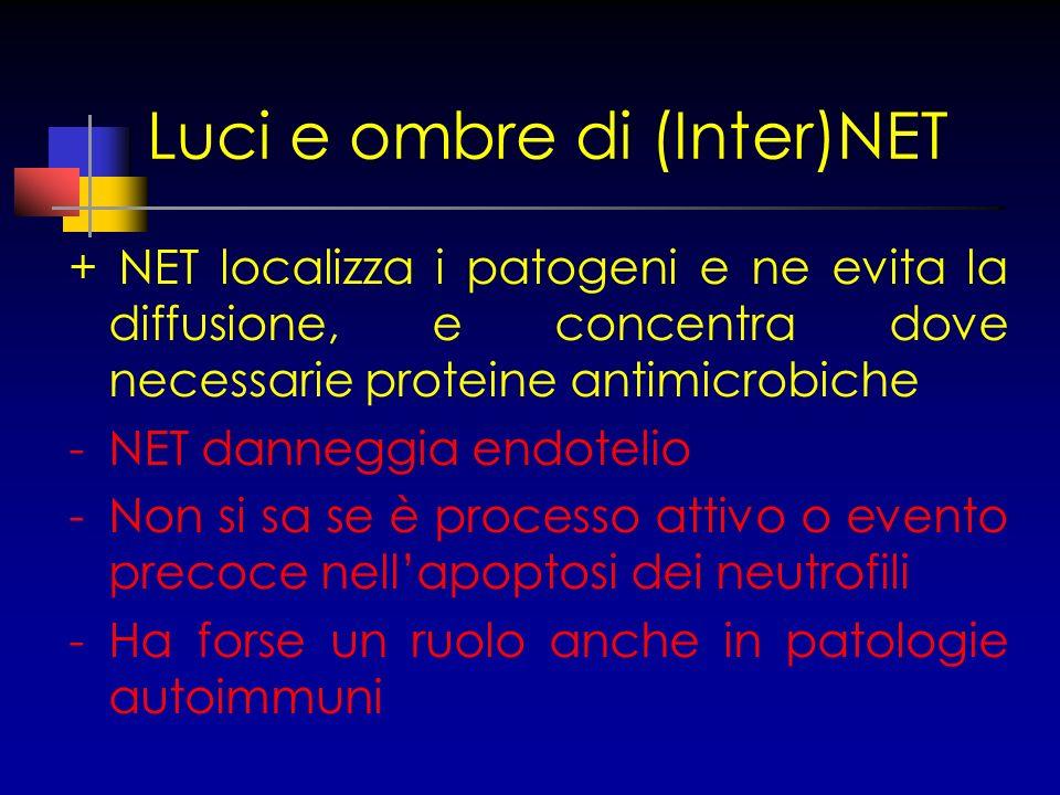 Luci e ombre di (Inter)NET